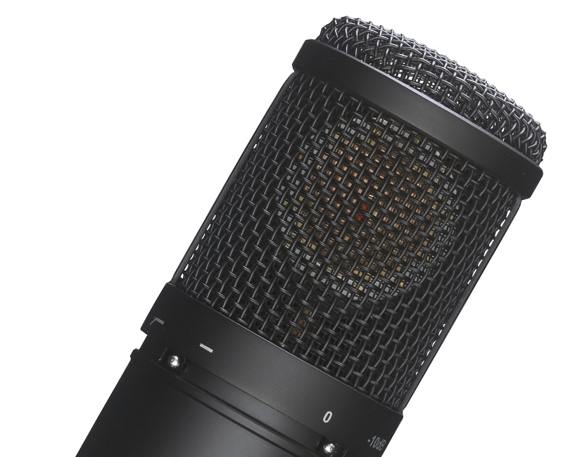 Microphone & related product